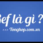 Ref là gì? Ref là viết tắt của từ gì? Ý nghĩa của Ref