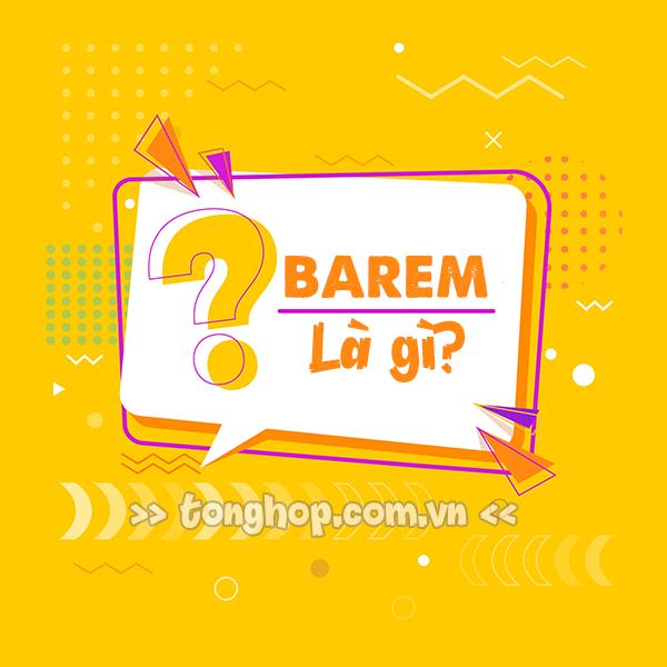 Barem là gì? Ý nghĩa của Barem trong một số lĩnh vực thường gặp